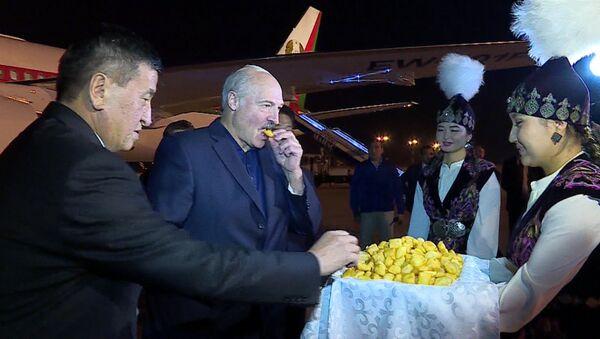 У аэрапорце Бішкека Лукашэнку пачаставалі баарсокамі - Sputnik Беларусь
