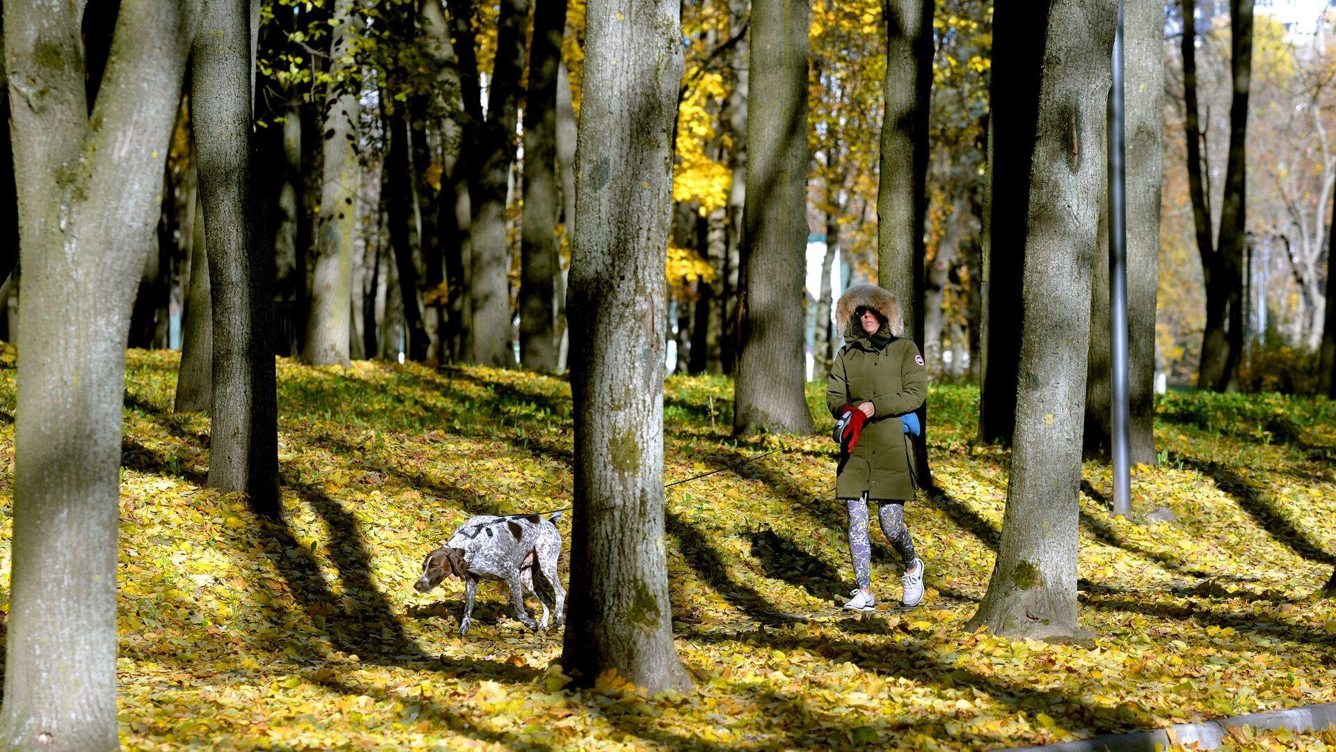 Прогулка в осеннем парке. Архивное фото - Sputnik Беларусь, 1920, 25.09.2021