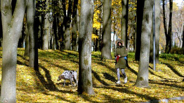 Прогулка в осеннем парке. Архивное фото - Sputnik Беларусь
