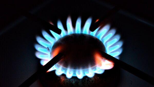 Газовая плита, архивное фото - Sputnik Беларусь