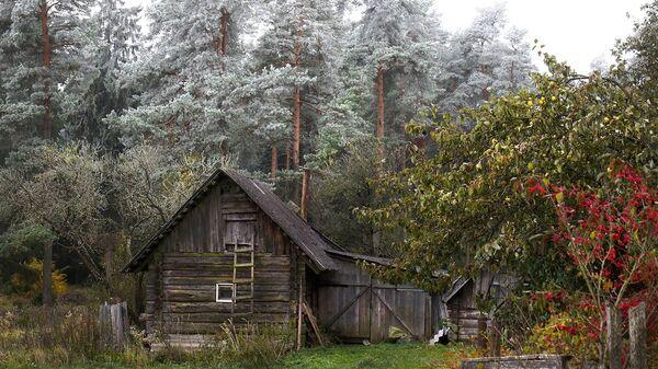 Осень в Поставском районе - Sputnik Беларусь
