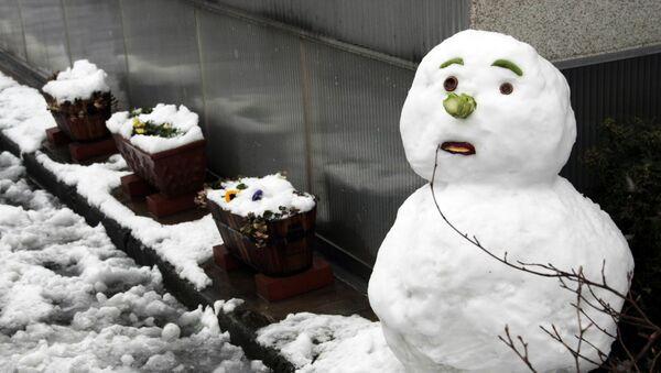 Снегавік падчас адлігі - Sputnik Беларусь