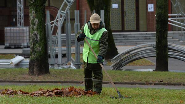 Уборка листьев с газона - Sputnik Беларусь
