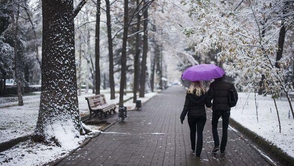 Першы снег - Sputnik Беларусь