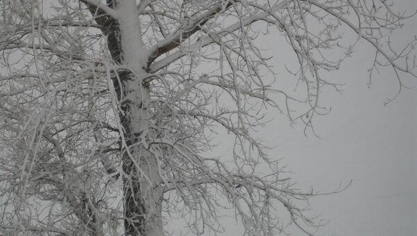 Мокры снег - Sputnik Беларусь
