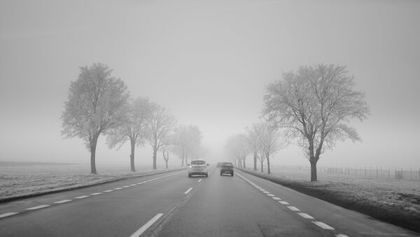Гололедица на дороге - Sputnik Беларусь
