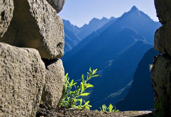 Вид на горы в Мачу-Пикчу – города, затерянного в небесах на высоте 2450 метров над уровнем моря. - Sputnik Беларусь