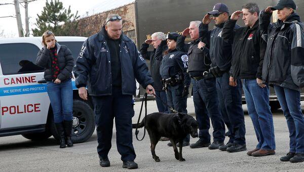 Офицеры Чикагской полиции провожают на эвтаназию полицейскую собаку Боба - Sputnik Беларусь