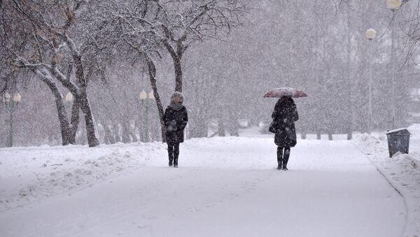 Снегопад - Sputnik Беларусь