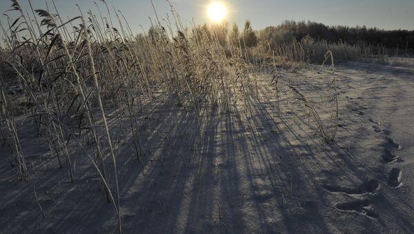 Які сёння дзень: 25 студзеня - Sputnik Беларусь