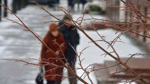 Пожилая пара пенсионеров в парке - Sputnik Беларусь