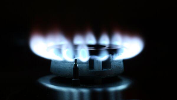 Конфорка газовой плиты, архивное фото - Sputnik Беларусь