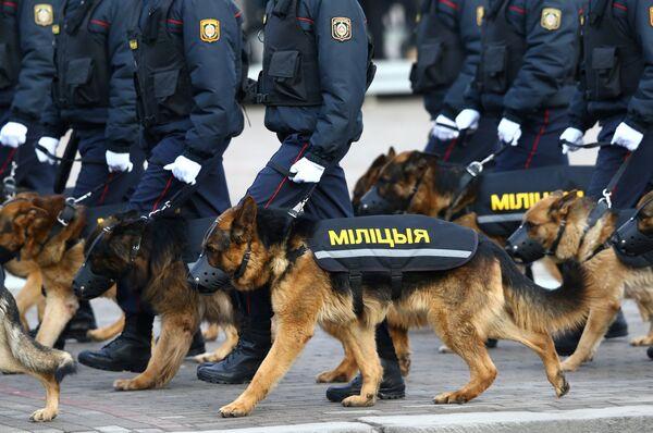 Милиционеры с собаками проходят маршем по проспекту Независимости - Sputnik Беларусь