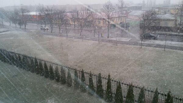 Снег у сакавіку ў Пінску - Sputnik Беларусь