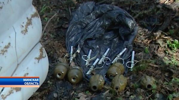 Схрон в районе деревни Теребейное в Столбцовском районе - Sputnik Беларусь