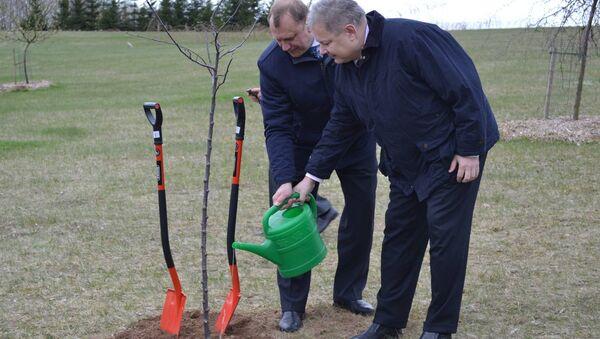 К 25-летию дипотношений Беларуси и Литвы стороны посадили яблоню - Sputnik Беларусь