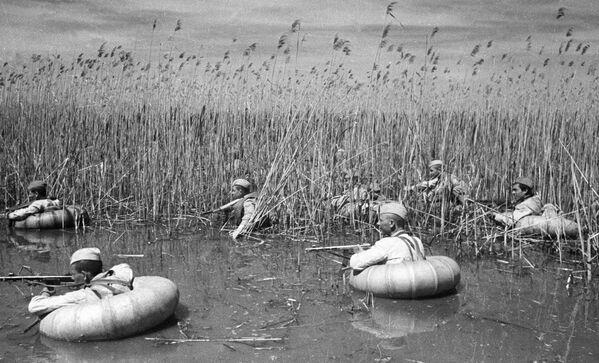 Разведчики форсируют кубанские плавни, 1943 год. - Sputnik Беларусь