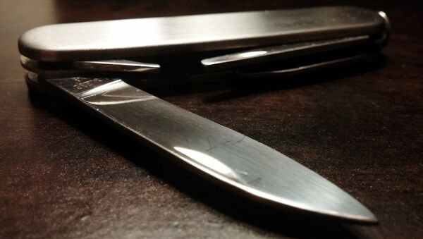 Перочинный нож, архивное фото - Sputnik Беларусь