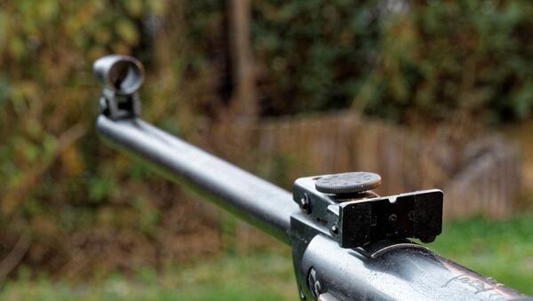 Пневматическая винтовка, архивное фото - Sputnik Беларусь