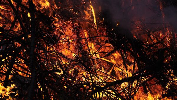 Пожар, архивное фото - Sputnik Беларусь