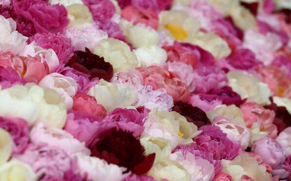 Выставка цветов в Челси - Sputnik Беларусь