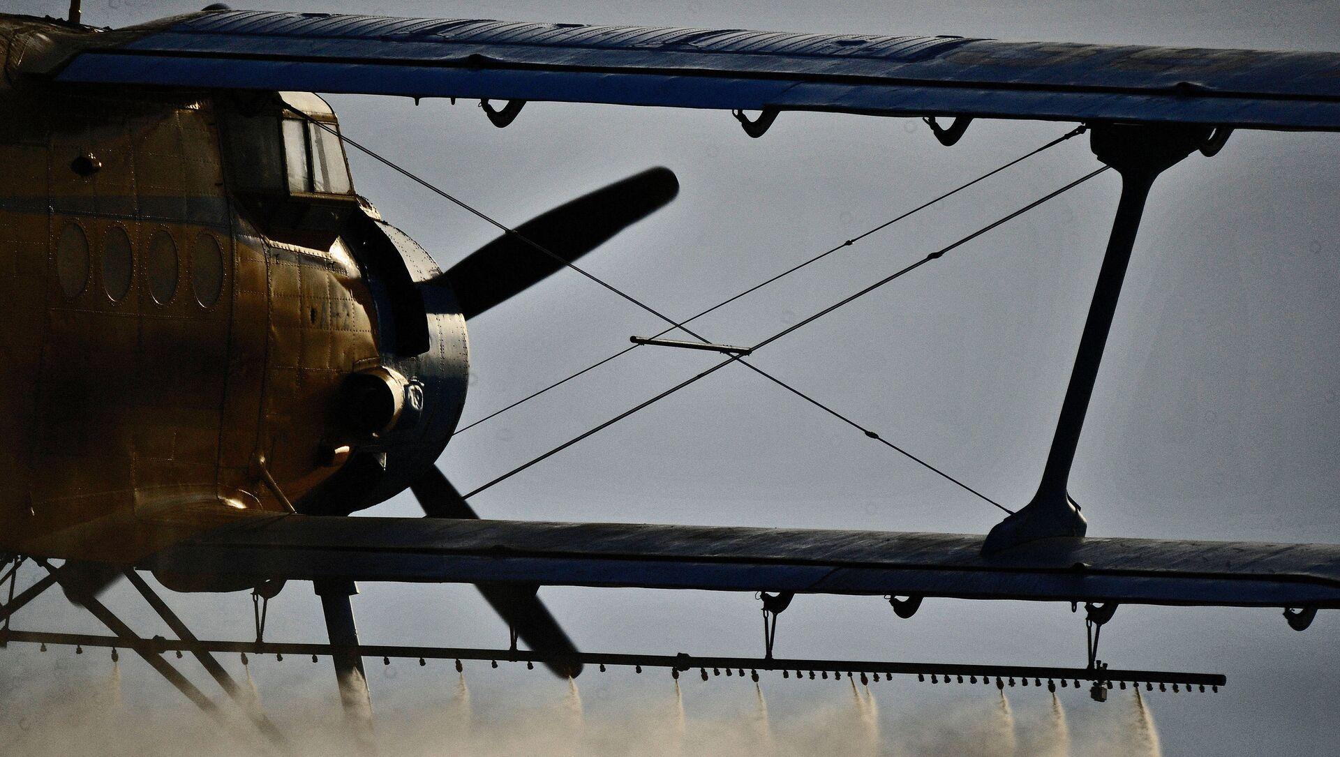 Самолет Ан-2, архивное фото - Sputnik Беларусь, 1920, 01.04.2021