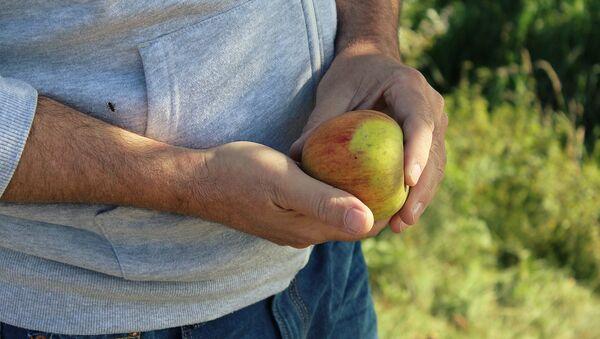 Наше здоровье во многом зависит от нашего питания - Sputnik Беларусь