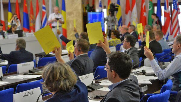 Голосование во время сессии ПА ОБСЕ в Минске - Sputnik Беларусь