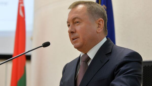 Владимир Макей на семинаре МИДа - Sputnik Беларусь