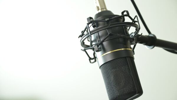 Микрофон, архивное фото - Sputnik Беларусь