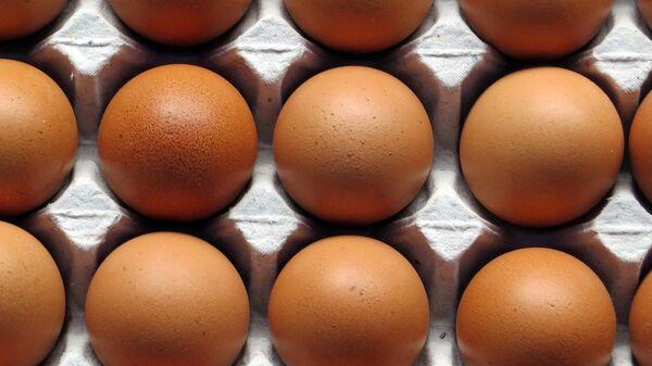 Куриное яйцо, архивное фото - Sputnik Беларусь