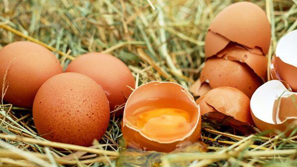 Куриные яйца, архивное фото - Sputnik Беларусь