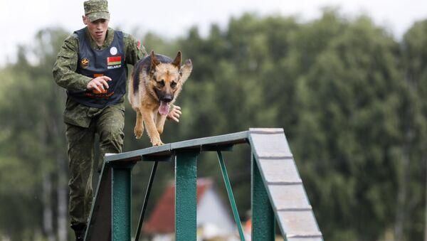 Белорусский кинолог с собакой на полосе препятствий - Sputnik Беларусь