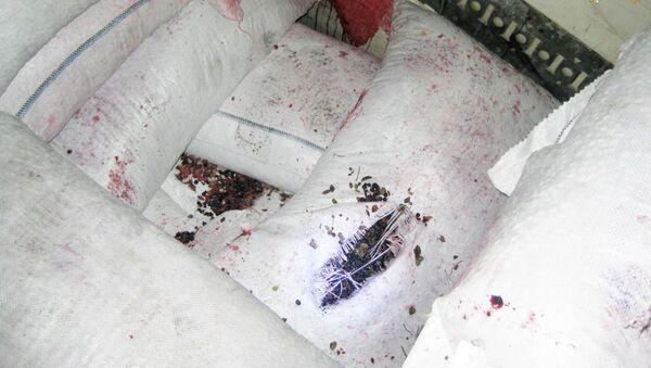 Беларусь вернула Украине 3 тонны радиоактивной черники с  цезием-137 - Sputnik Беларусь
