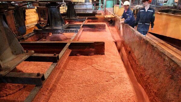 Сотрудницы наблюдают за работой флотационной машины на обогатительной фабрике предприятия Беларуськалий под Солигорском - Sputnik Беларусь