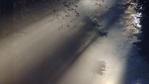 Туман - Sputnik Беларусь