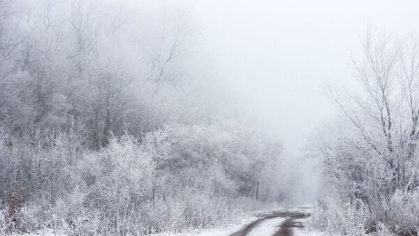 Туман зімой - Sputnik Беларусь