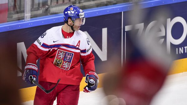 Чешский хоккеист Яромир Ягр, архивное фото - Sputnik Беларусь
