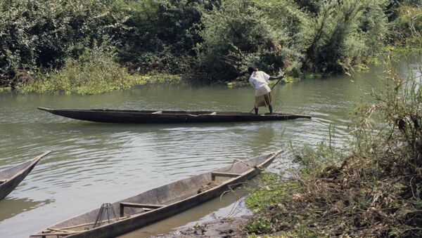 Пойма реки Нигер, архивное фото - Sputnik Беларусь
