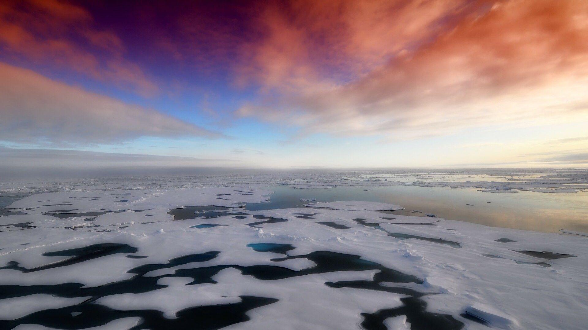 Антарктида - Sputnik Беларусь, 1920, 06.04.2021