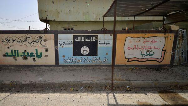 Стена города Хавия в Ираке - Sputnik Беларусь