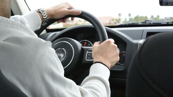 Водитель за рулем автомобиля - Sputnik Беларусь