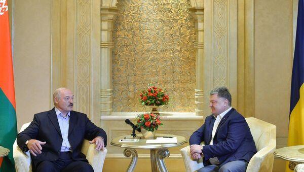 Лукашенко встретился в ОАЭ с президентом Украины - Sputnik Беларусь