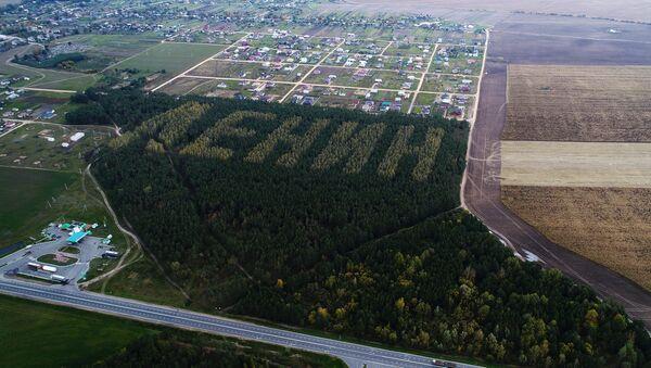 Лесной Ленин, высаженный из берез и сосен к 50-летию революции - Sputnik Беларусь