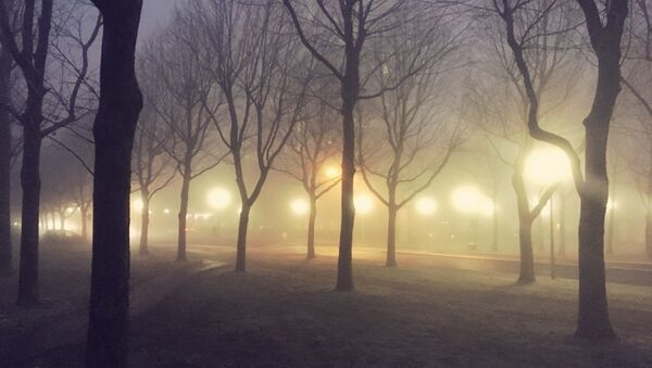 Аранжавы ўзровень небяспекі аб'яўлены на 11 снежня з-за туману - Sputnik Беларусь