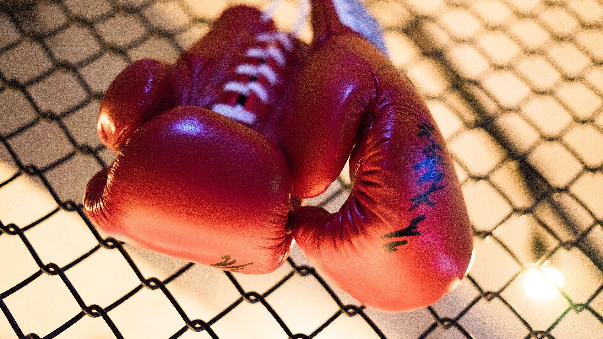 Боксерские перчатки, архивное фото - Sputnik Беларусь, 1920, 02.10.2021