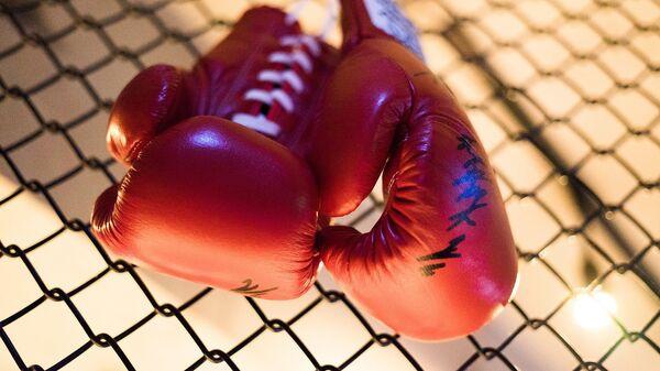 Боксерские перчатки, архивное фото - Sputnik Беларусь