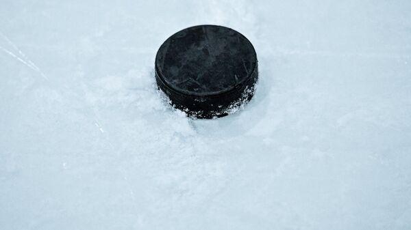 Шайба на льду катка, архивное фото - Sputnik Беларусь