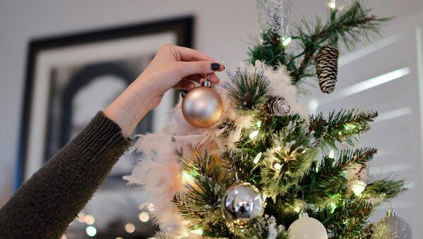 Новогодняя ель - Sputnik Беларусь
