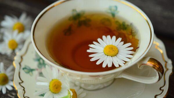 Рамонкавы чай, архіўны фотаздымак - Sputnik Беларусь